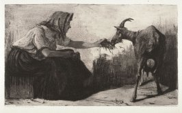 Woman feeding a goat