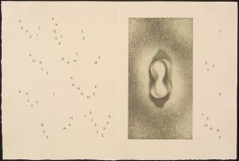 Untitled, pg. 7 (double page), in the book Maximiliana ou l'exercice illégal de l'astronomie: L'Art de voir de Guillaume Temple by Max Ernst (Paris: Iliazd, 1964).