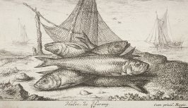 Halec, Le Harang (The Herring), from:Salt Water Fish, Part II