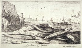 Eperlanus, L'Esperlan (The European Smelt), from Salt Water Fish, Part II
