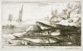 Scomber, Le Maquereau (The Mackerel), from Salat Water Fish, Part I