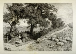 Sheep feeding, plate 14 in the book, The Etcher (London: Sampson Low…, 1880), vol. 2 [bound in same volume as vol. 1, 1879]