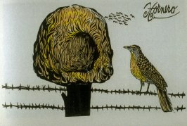 Hornero: Red Oven-bird, second plate in the book Birds from my Homeland with notes from W. H. Hudson's Birds of La Plata ([New York: Igal Roodenko,] 1958)