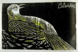 Calandra: Argentine Calandria Mocking- Bird, third plate in the book Birds from my Homeland with notes from W. H. Hudson's Birds of La Plata ([New York: Igal Roodenko,] 1958)