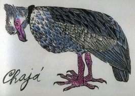 Chaja: Southern Crested Screamer, ninth plate in the book Birds from my Homeland with notes from W. H. Hudson's Birds of La Plata ([New York: Igal Roodenko,] 1958)