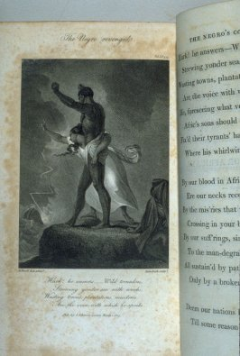 The Negro revenged, plate opposite page 375 in the book Poems by William Cowper (London: J. Johnson, 1808), vol. 1