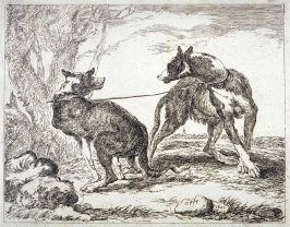 Two dogs out of set of seven dogs