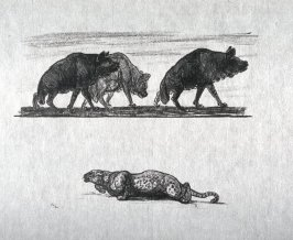 Three Hyenas and crouching leopard