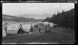 Untitled (Tennessee Hollow, The Presidio, San Francisco)