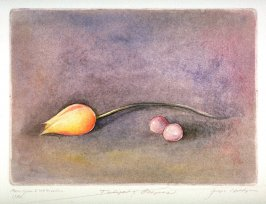 Tulip and Grapes