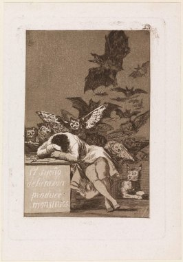 El sueño de la razon produce monstruos (The Sleep of Reason Produces Monsters), Plate 43 from the series Los Caprichos (Caprices)