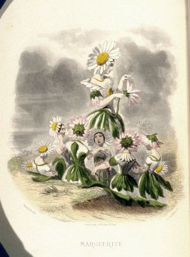 Marguerite, plate opposite p. 193 in the book, Les Fleurs animées (Paris: Garnier Frères, undated)