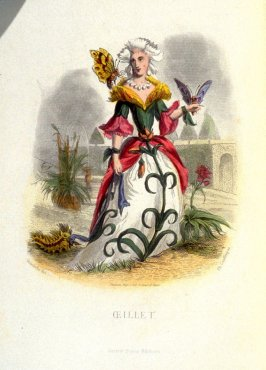 Œillet, plate opposite p. 219 in the book, Les Fleurs animées (Paris: Garnier Frères, undated)