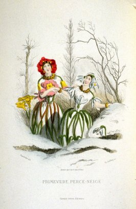 Primevere, Perce-Neige, plate opposite p. 337 in the book, Les Fleurs animées (Paris: Garnier Frères, undated)