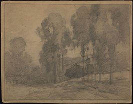 Landscape with Eucalyptus