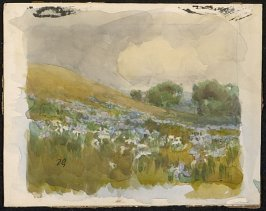 Hillside and Wild Iris, place card for Mr. L. Murch
