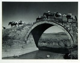 A pack train of Mongolian ponies moves over an arched bridge to a nearby town. On animals, in carts or baskets peasants carry the products of their small farms often more than 50 miles to a county market.