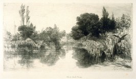 Shere Mill Pond (Surrey) No.II - Plate XXI from the Portfolio Études à l'eau-forte (with text by Philippe Burty)