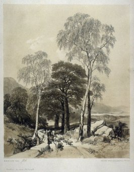 Birch and Oak: The Trees from Birkland near Thoresly Park, the Scene on the Lake of Ulswater, nineteenth plate in the disbound book The Park and the Forest (London: T. Maclean, 1844)