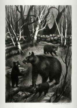 The Family (Mother bear and three cubs)