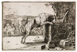 Dog Drinking from a Fountain, from the series The Set of Animals