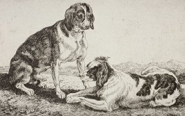 [Two dogs]