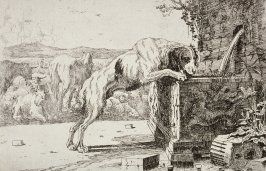 [Dog drinking from a fountain]