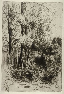 Landscape with trees and wooden fence