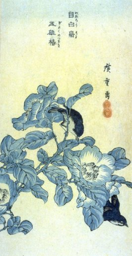 Camellia and small Birds - From a set of 6 Bird and Flower prints in Chinese style