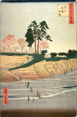 Goten Hill in Shinagawa (Shinagawa gotenyama), no. 28 from the series One Hundred Views of Famous Places in Edo (Meisho edo hyakkei)