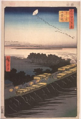 Nihon Embankment and the Yoshiwara (Yoshiwara nihonzutsumi), no. 100 in the series One Hundred Views of Famous Places in Edo (Meisho edo hyakkei)