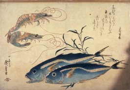 Untitled (Two Prawns, Two Aji, and Tade), one of ten from an untitled series of fish
