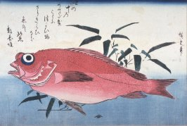 Untitled (Ako and Bamboo Grass), one from a series of large fish