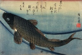 Untitled (Swimming Carp), one from a series of large fish