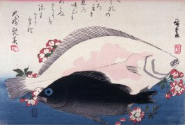 Untitled (Mebaru, Hirame, Cherry Blossoms), one from a series of large fish
