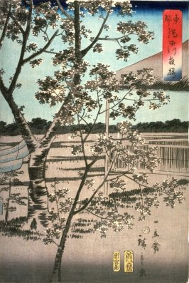 Cherry Trees at Night by the Sumida River in Tokyo (Toto sumidagawa yozakura)