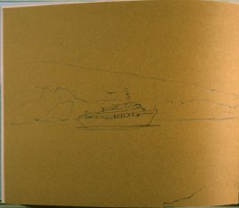 Chinstrap Penguins/Nelson Islands/Our First Landing,fourteenth image from Travel Sketchbookof Antarctica