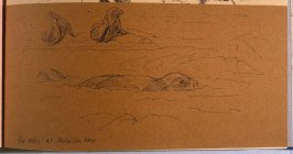 Fur Seals at Mikelson Bay, thirty-fourth image from Travel Sketchbook of Antarctica