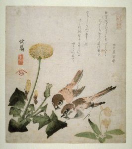 Two Sparrows, Dandelion and Violets , from a series, Six Pictures of Birds and Flowers