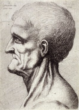 Head of a Toothless Man with Bare, Sinewy Neck in Profile to Left