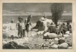 Clam Bake, from Harper's Weekly
