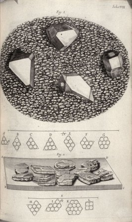 Scheme VII, seventh plate, opposite page 82 in the book, Micrographia: or some physiological Descriptions of minute Bodies made by Magnifying Glasses. With Observations and Inquiries thereupon (London: printed by Jo. Martyn and Ja. Allestry, printers to t