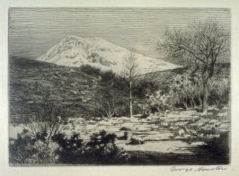 [landscape with high mountain in the background]