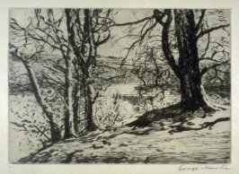 [landscape with trees by a stream]