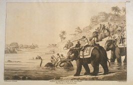 Chasing a Tige Across a River, pl. 16 in the book, Oriental Field Sports … (London: Edward Orme and B. Crosby and Co., 1808), vol. 1