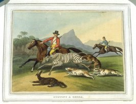 Hunting a Zebra, tenth plate in the book, Foreign field sports, fisheries, sporting anecdotes...with a supplement of New South Wales (London: Edward Orme, 1814))