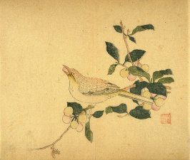 Oriole eating a cherry, No.9 from Volume I(1+2) on Miscellaneous Subjects - from: The Treatise on Calligraphy and Painting of the Ten Bamboo Studio
