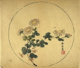Wild Chrysanthemums, No.6 from the Volume on Round Fans - from: The Treatise on Calligraphy and Painting of the Ten Bamboo Studio