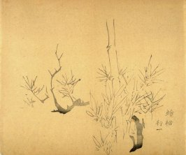"""Cold Pine""- No.17 from the Volume on Bamboo - from: The Treatise on Calligraphy and Painting of the Ten Bamboo Studio"