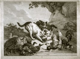 Two dogs attacking a sheep, with poultry